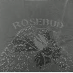 Rosebud – Film Rhetoric Review – Citizen Kane
